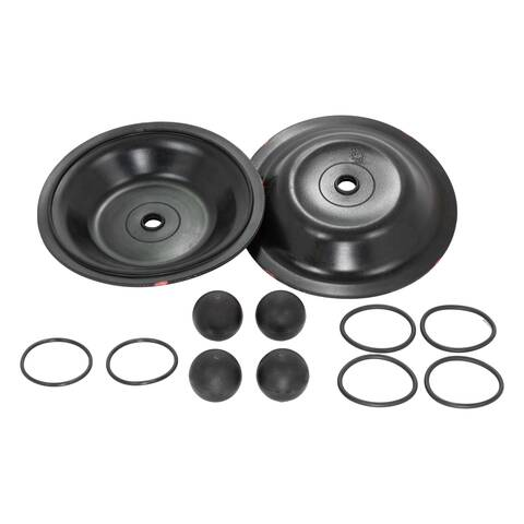 Image: Diaphragm Repair Parts Kit for 1 inch Yamada Pump part number K25-MN-1